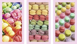 MACARONS- HOWAR SHOOTER