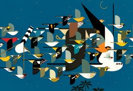 MYSTERY OF THE MISSING MIGRANTS-CHARLEY HARPER