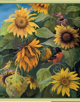 SUMMER BIRDS & SUNFLOWERS-JAY BURCH