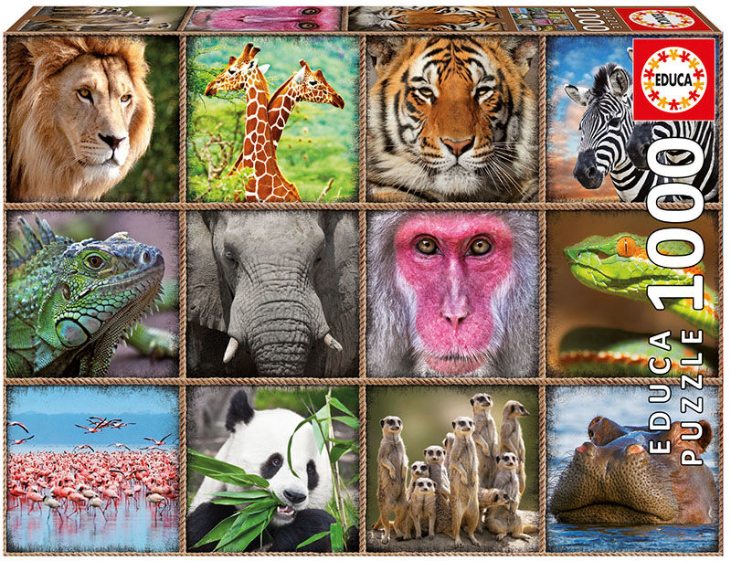 COLLAGE ANIMALES SALVAJES
