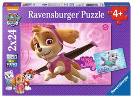 PAW PATROL: SKYE Y EVEREST