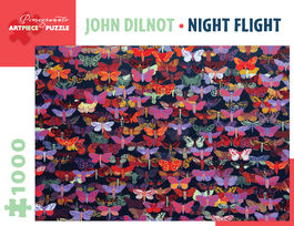 NIGHT FLIGHT - JOHN DILNOT